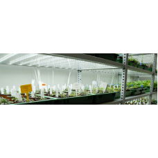Picture of Cultivation shelf PSI CS 250/200_7_3.4
